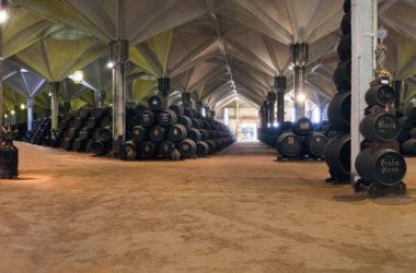 Williams & Humbert: tradición, innovación y excelencia en la elaboración de vinos de Jerez